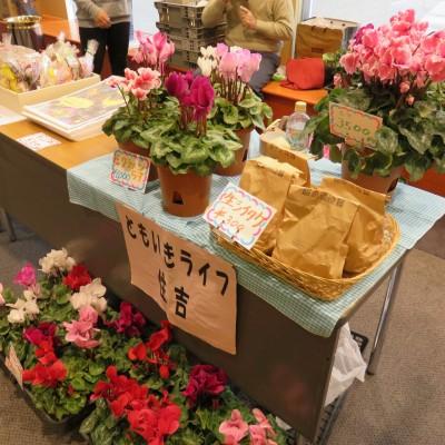 お花の販売など